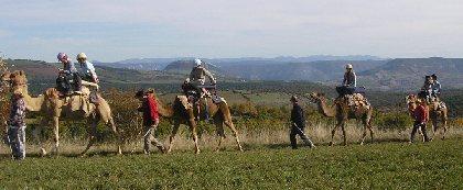 Ferme de la Blaquière randonnée à dromadaire, OFFICE DE TOURISME DE SEVERAC LE CHATEAU