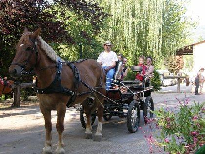 La Frégière Équitation, OFFICE DE TOURISME DU CANTON DE MARCILLAC