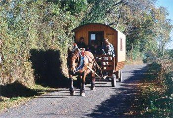 Ferme équestre du Pradal en Aveyron- Chariot