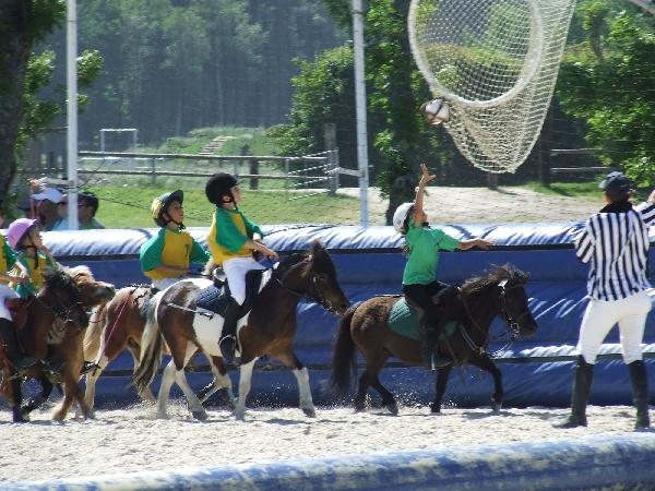 Ferme Equestre du Badour - Equi'poons