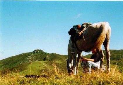 Ranch du Barrez - Randonnée équestre