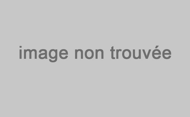 La ferme de Lacan randonnée avec un âne