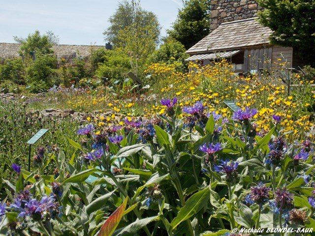 Jardin botanique de l 39 aubrac tourisme aveyron for Boutique jardin botanique