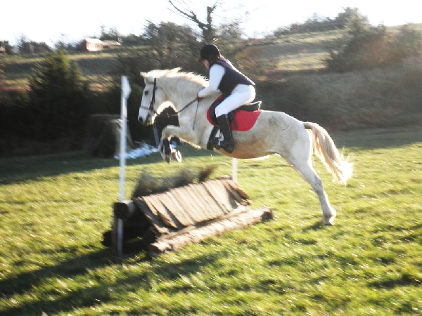Ségala équitation