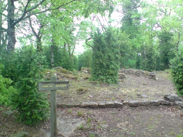 Nécropole wisigothe du Sabel