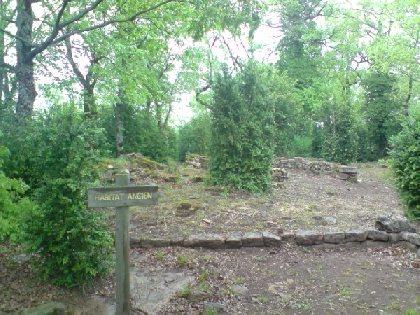 Espace du Sabel : sentier découverte et parcours d'orientation