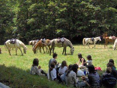 Ferme Equestre du Badour Equi'adult