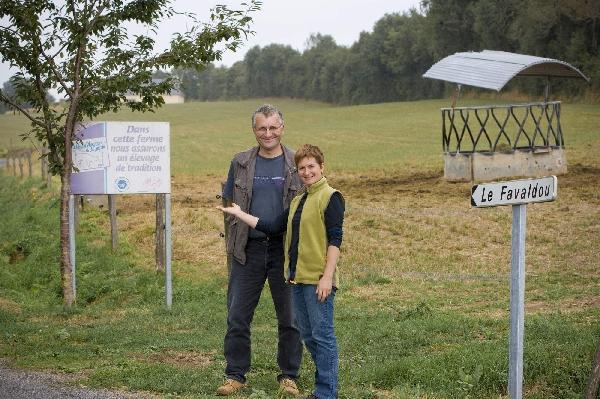 Visite à la ferme de la Fanquèze du Favaldou : Le Veau d'Aveyron et du Ségala