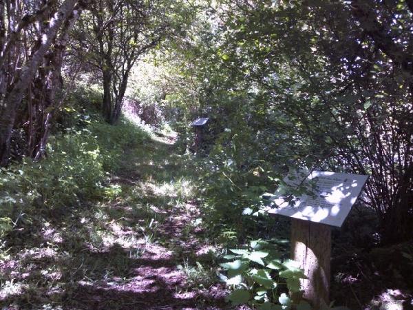 Sentier botanique de St-Léons