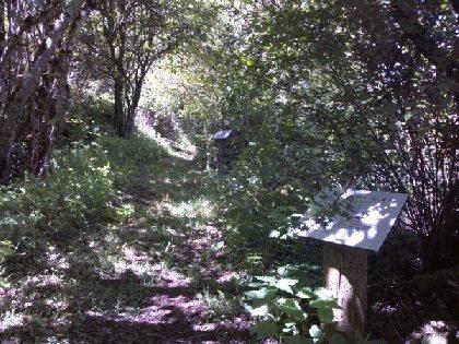 Sentier botanique, OFFICE DE TOURISME DE PARELOUP LEVEZOU