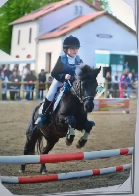 Poney club La Goudalie