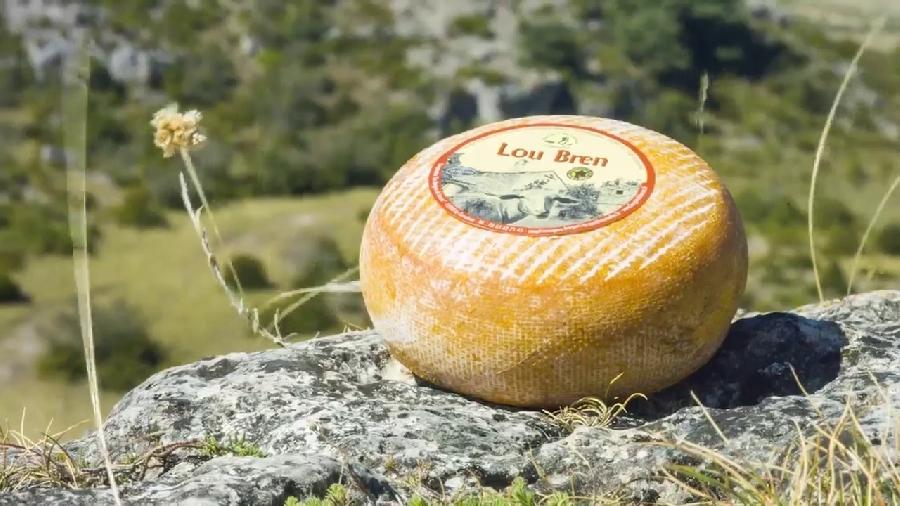 Fromagerie coopérative des Bergers du Larzac