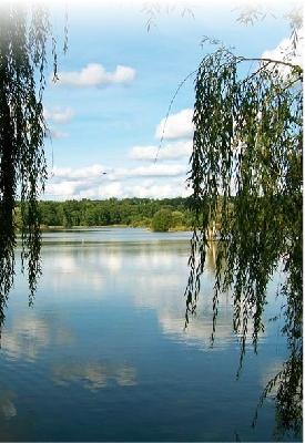 Aire de service pour Camping-car au Lac aux oiseaux