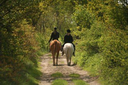 Clem'Horse, OFFICE DE TOURISME INTERCANTONAL SAINT GENIEZ  / CAMPAGNAC