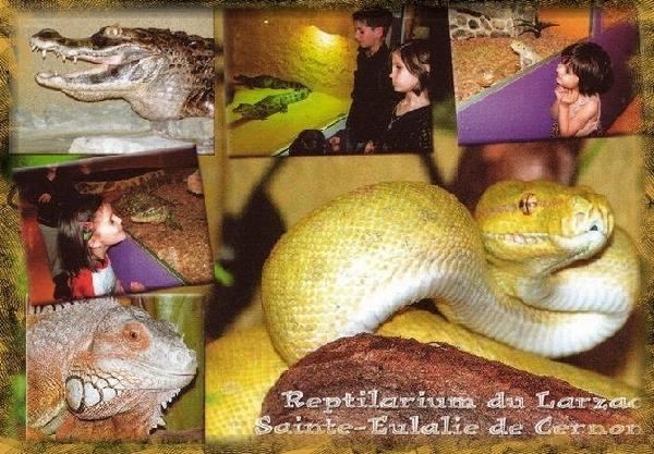 Le Reptilarium du Larzac (groupes)