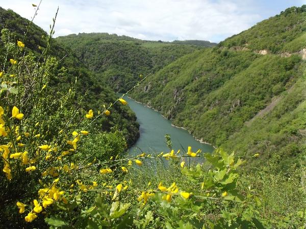 Itinérance en Vallée du Tarn