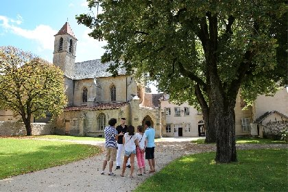 Chartreuse St Sauveur
