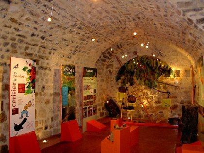 Musée de la Cerise - Vallée du Tarn, Maison de la Cerise