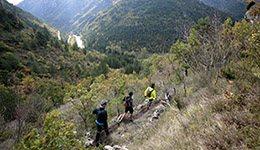 Trail : Peyreleau - La Jonte