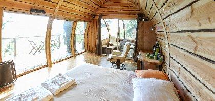 La Cabane de Millau, Greg ALRIC