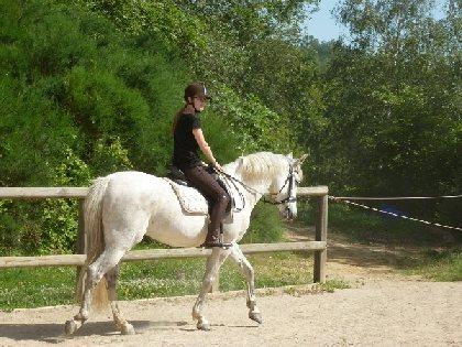 Domaine de la Broutie équitation