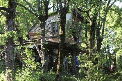 Cabane dans les arbres Caracole