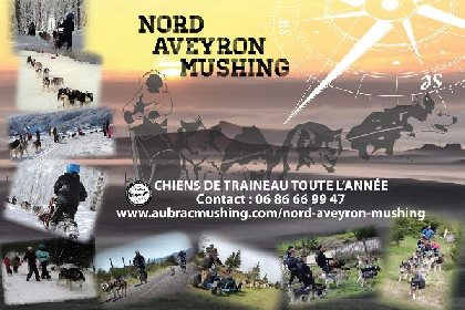 Nord Aveyron Mushing, OFFICE DE TOURISME DE LAGUIOLE
