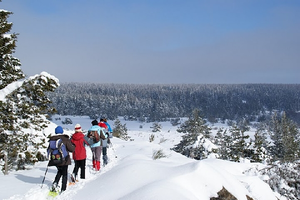 La Maison du Plein Air - Raquettes à neige