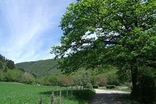 VTT : Circuit de Cabanac, Comité Départemental du Tourisme de l'Aveyron