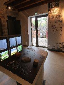 Espace des Enfarinés - Collection de minéraux et de fossiles