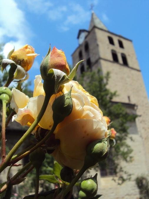 Le Roseraie à Sauveterre de Rouergue