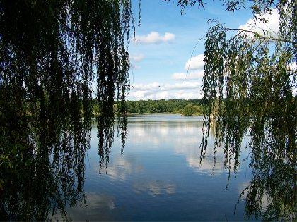 Lac de Bannac - lac aux oiseaux, OFFICE DE TOURISME REGIONAL DE VILLEFRANCHE DE ROUERGUE