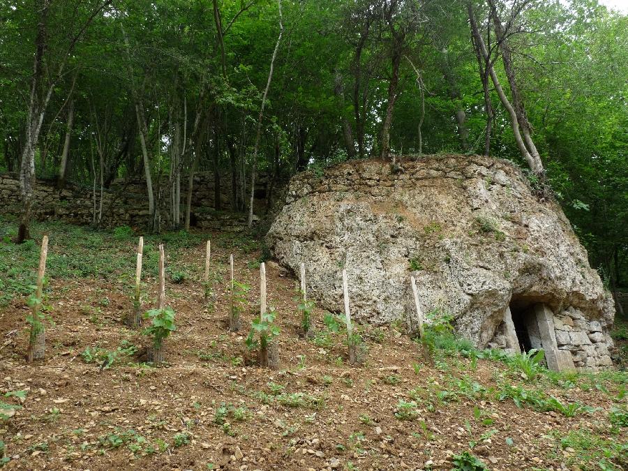 Journées du Patrimoine - Caves troglodytes de Cassagnettes