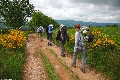Le GR®65 - Le chemin de Saint-Jacques de Compostelle : Étape n° 4 : Golinhac – Conques