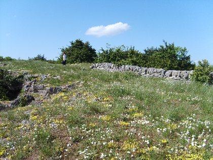 Randonnée Le plateau du Guilhaumard - PR44
