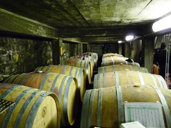 Portes ouvertes à la cave des Vignerons du Vallon